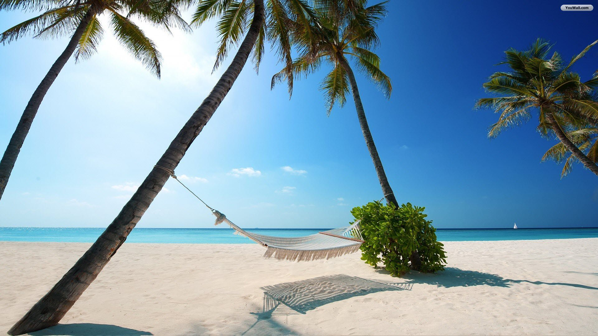 Alquiler de yates en la Islas Bahamas.Barcos de alquiler en bahamas
