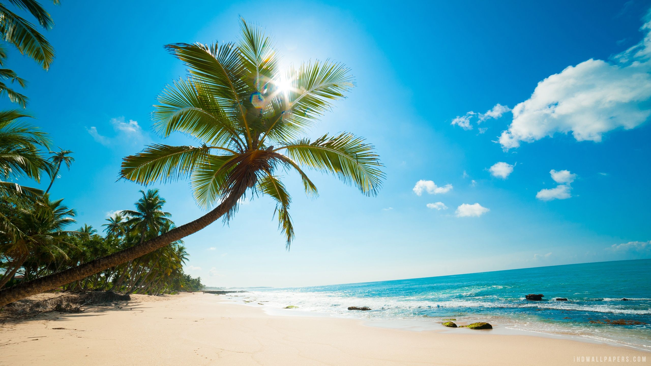 Alquiler de yates en el Mar Caribe. Alquiler de yates en Caribe. Yates de alquiler en el Caribe
