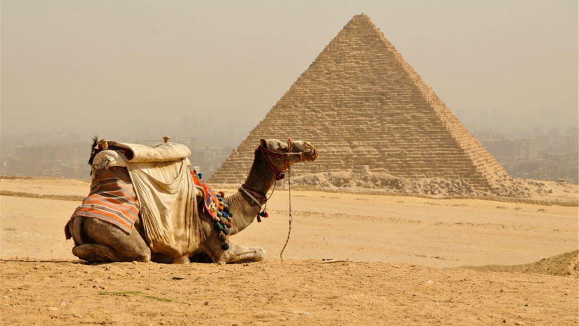 Alquiler de yates en Egipto. Alquiler de barcos baratos en Egipto