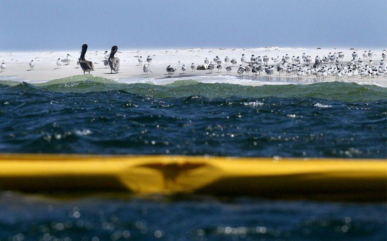 Alquiler de yates en el Golfo de México. Barcos baratos de alquiler en México. Yates lujosos de alquiler